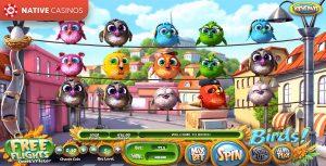 Birds! game preview