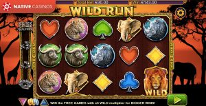 Wild Run game preview